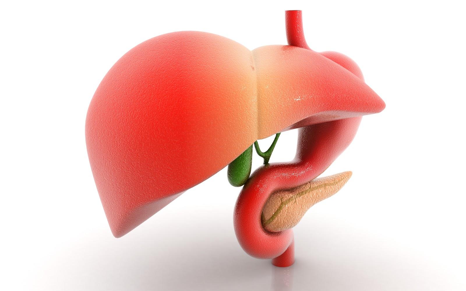 الأسباب الرئيسية المساهمة في إتلاف الكبد هي